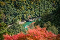 Arashiyama. Colorful of maple forest on the mountain at autumn season in Arashiyama, Kyoto, Japan. From observation view point at Senkoji temple, over hozu river royalty free stock images