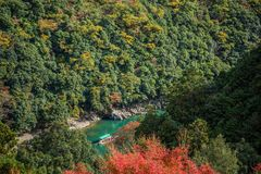 Arashiyama. Colorful of maple forest on the mountain at autumn season in Arashiyama, Kyoto, Japan. From observation view point at Senkoji temple, over hozu river royalty free stock photo