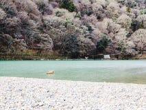 Arashiyama flod royaltyfri fotografi
