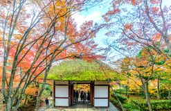 Entrance pavilion in Jojakkoji temple, Arashiyama, Japan. ARASHIYAMA, JAPAN - NOVEMBER 27 : Entrance pavilion in Jojakkoji temple surrounded with colorful leaves royalty free stock photos