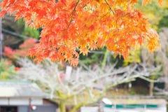 Arashiyama, Kyoto, Japón Fotos de archivo