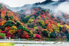 Arashiyama, Kyoto, Japan Stock Afbeelding