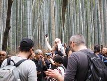Arashiyama /kyoto, Japan - April 12, 2018: Chikurin-ingen-Michi bambudunge och grupp av turism royaltyfri bild