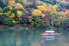 Arashiyama Kyoto Japan during autumn. Boat rowing on a rainy day at the Arashiyama area in Kyoto, Japan. Shot this on November 8th 2015 Royalty Free Stock Photos
