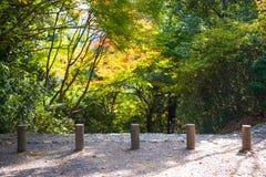Arashiyama park at autumn season. In Kyoto, Japan Stock Image