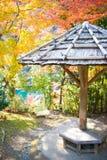 Arashiyama park at autumn season. In Kyoto, Japan Stock Images