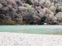 Arashiyama river. In Kyoto Royalty Free Stock Photography