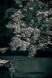 Arashiyama sightseeing. A sightseeing row boat with tourist travel in Katsura River, Kyoto, Japan Royalty Free Stock Photography