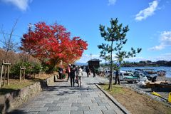 Arashiyama, The travel destination in Japan. People waliking along the Oi river with colorful of maple leaf  in autumn season Stock Image