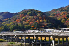 Arashiyama and wooden bridge in color of autumn, Kyoto Japan. Stock Images