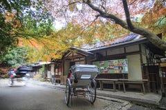 Arashuyama maple time at fall,Japan. ARASHIYAMA-Nov 25: Unidentified people enjoy colorful maple on Nov 25, 2013 at the park in Arashiyama, Japan. Arashiyama Royalty Free Stock Images