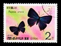Arata istantaneo giapponese di Rapala, serie delle farfalle, circa 1977 Immagine Stock