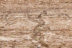 Arato per la semina della terra Immagine Stock Libera da Diritti