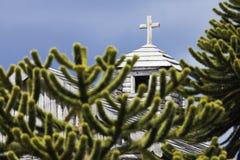 Araucaria en kerk in Fort Bulnes, Chili Royalty-vrije Stock Foto