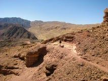 Arava desert Royalty Free Stock Photo