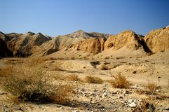 Arava desert - dead landscape, background Royalty Free Stock Photography