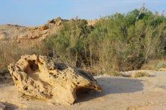 Arava desert in the first rays of the sun. Arava desert (southern Israel) in the first rays of the sun Stock Photos