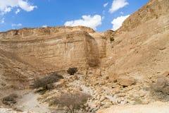 Arava desert travel in Israel. Hiking in mideast stone desert tourism Stock Photography