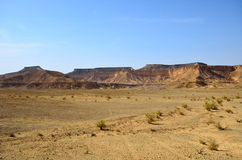 Arava pustynia zdjęcie stock