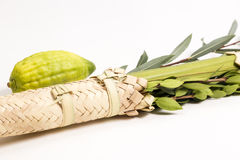 Arba Minim of Sukkot Royalty Free Stock Photography