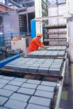 Arbeider bij machine bij steenblokken het drogen Stock Foto's