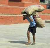 Arbeider die een zware lading draagt - Katmandu Royalty-vrije Stock Afbeeldingen