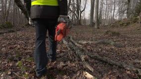 Arbeider die met kettingzaagbegin dichtbij gevallen boom in park lopen stock video