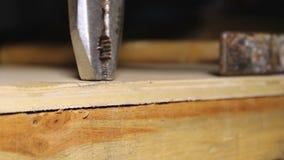 Arbeider die spijker verwijderen uit hout, die hard fout, tweede kans werken te bevestigen stock videobeelden