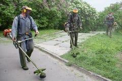 Arbeider in M.M. Gryshko National Botanical-Tuin (Kiev, de Oekraïne). Stock Foto