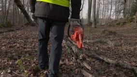 Arbeider met kettingzaag dichtbij gevallen boom in park stock footage