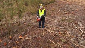Arbeider met kettingzaag op steile boshelling stock videobeelden