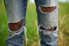 Arbeider in modieuze gescheurde jeanstribunes in het landbouwbedrijf royalty-vrije stock afbeelding