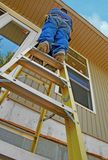 Arbeider op Ladder Stock Afbeelding