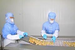 Arbeiders in de productielijn van de voedselverwerking Royalty-vrije Stock Foto