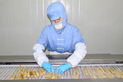 Arbeiders in de productielijn van de voedselverwerking Stock Afbeeldingen