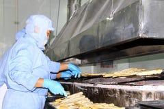 Arbeiders in de productielijn van de voedselverwerking Stock Afbeelding