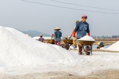 Arbeiders die kruiwagens duwen bij de zoute gebieden van Hon Khoi in Nha Stock Afbeeldingen