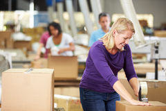 Arbeiders die in Pakhuis Goederen voor Bericht voorbereiden Stock Foto's