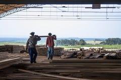Arbeiders in een zaagmolen royalty-vrije stock foto