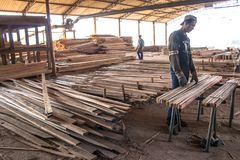 Arbeiders in een zaagmolen stock fotografie