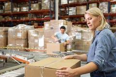 Arbeiders in het Pakhuis van de Distributie Stock Fotografie