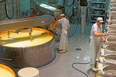 Arbeiders van de kaasbereidingsfabriek tijdens industriële productie o royalty-vrije stock foto