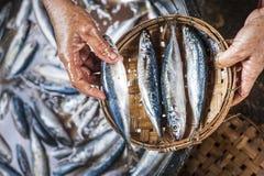 Arbeidershanden die een plaat met vissen houden Royalty-vrije Stock Foto