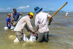Arbeiten an dem Meer Lizenzfreies Stockbild