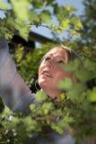Arbeiten im Garten Lizenzfreie Stockfotos