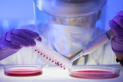 Arbeiten im Labor mit einem hohen Maß Schutz Lizenzfreie Stockfotos