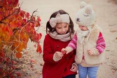 Arbeiten Sie Babys Schwestern stilvolles gekleidetes brunnette und blonde tragende warme die Herbstkleidungsjackenaufstellung um, Stockfotos