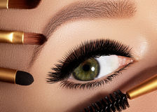 Arbeiten Sie die Frau um, die Lidschatten, Wimperntusche auf Augenlid, Wimper und Augenbraue unter Verwendung der Make-upbürste a lizenzfreie stockbilder