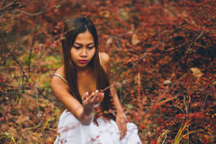 Arbeiten Sie herrliche junge Frau im schönen weißen Kleid in einer Märchenwaldmagieatmosphäre um Stockfotos