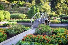 Arbeiten Sie an inthanon Berg, Chiang Mai, Thailand im Garten Lizenzfreie Stockbilder